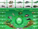 Bug Slots