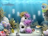 Escape The Reef