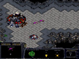 Starcraft Zergling Defence