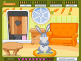 Bunny Paradise