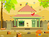 Dreamy Rural House