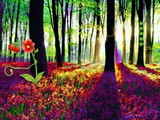 Red Flower Forest Escape