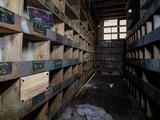 Abandoned Murphy Machinery