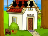 Pleasant Forest House Escape