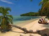 Ocean Bay Resort Escape