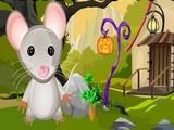 Rat Rescue
