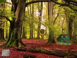 Taiga Forest Escape