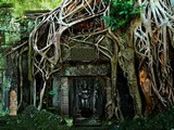 Mayas Dynasty Forest Escape