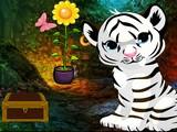 White Tiger Cub Rescue