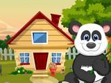 Cute Giant Panda Rescue