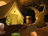 Primitive Forest Escape
