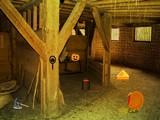 Wild Turkey Farm Escape