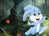Cute Bunny Rescue