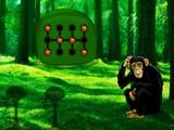 Chimpanzee Tangled Escape
