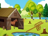 Cowboy Horse Rescue