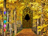 Easy Yellowish Forest Escape