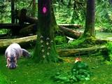 Hippo Jungle Escape