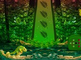 Wild Chameleon Forest Escape