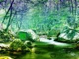 Secret River Valley Escape