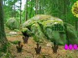 Trekking Rock Forest Escape