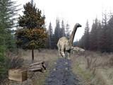Abandoned Natural Park