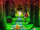 Broadleaf Forest Escape