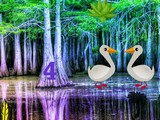 Duck Forest Escape