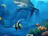 Underwater Flight Recorder Retrieval