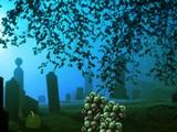 Graveskull Forest Escape