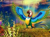 Macaw Fantasy Escape