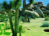 Joshua Tree Forest Snake Escape