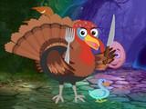Turkey Bird Escape