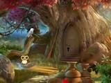 Hidden Owl Forest Escape
