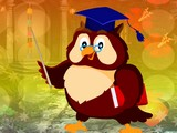 Graduate Owl Escape