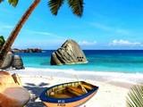 Island Sea Shell Escape