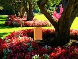 Style Garden Escape