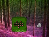 Speculation Forest Escape