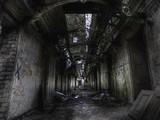 Crazy Asylum