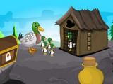 Duckling Rescue Final