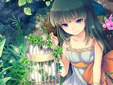Forest Fairy - Hidden Stars