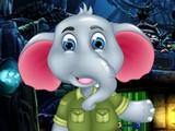 Overjoyed Elephant Escape