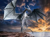 World of Dragons - Hidden Stars