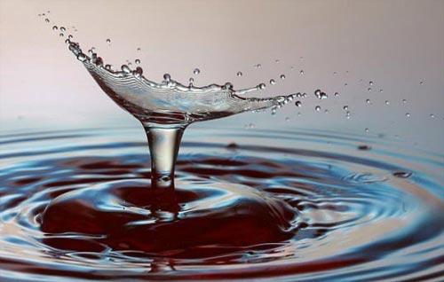 Вода - мыслящее вещество?