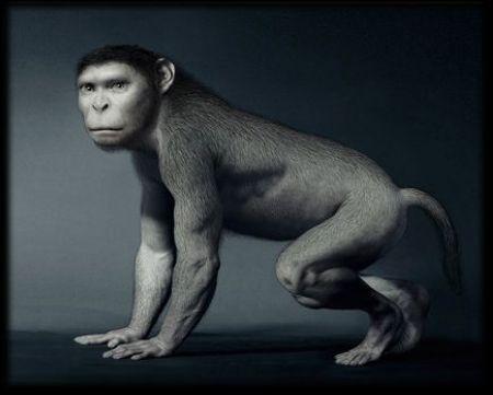 Эволюция от рыбы к человеку