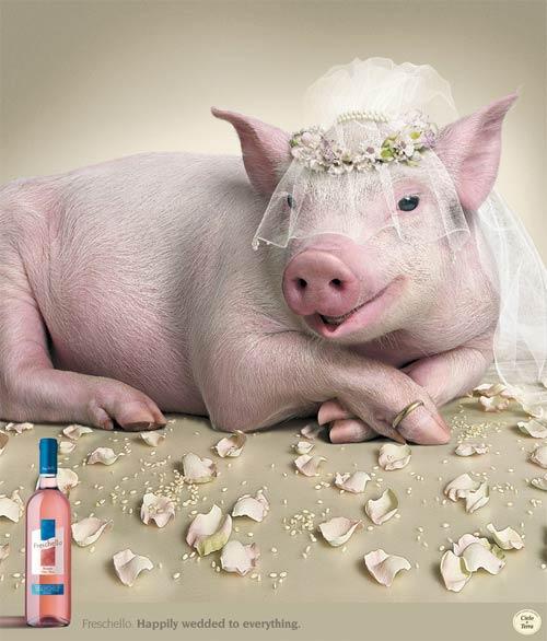 Невесты - прикольная реклама Freschello