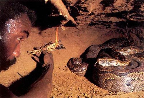 Ловля анаконды