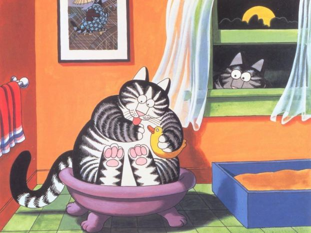 Коты на рисунках