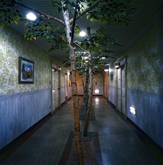 Прогулка по японскому дому любви