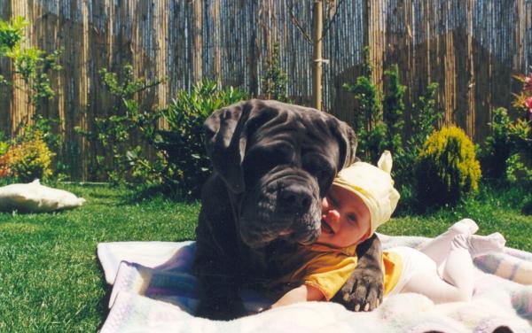 Малыш в объятиях собаки
