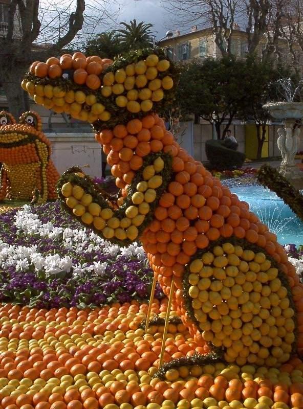 Апельсиновое царство